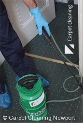 Professional Carpet Cleaners Newport 3015