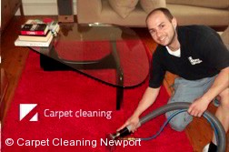Newport 3015 Rug Cleaning