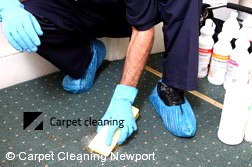 Carpet Cleaning Newport 3015